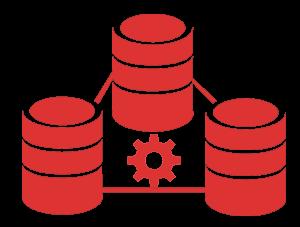 records & database management